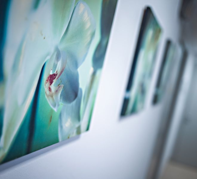 Gallery Diagnostica 53